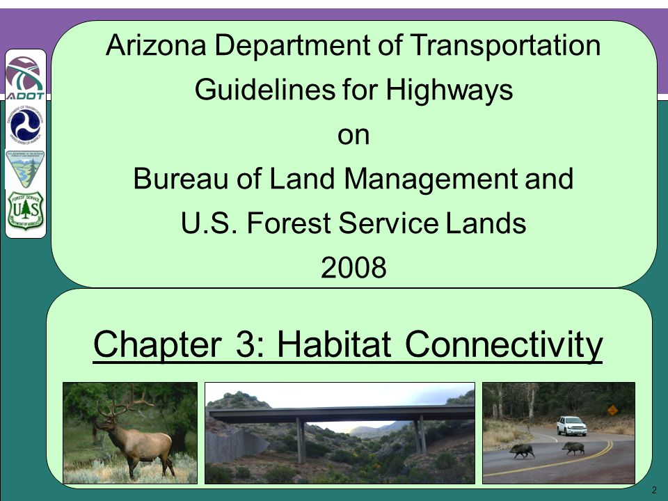 3 Acknowledgments: Prepared by Wheat Scharf Associates and the Guidelines Steering Committee ADOT Members: LeRoy Brady Richard Duarte* Doug Forstie John Louis* Mary Viparina Todd Williams Contributors: Thor Anderson Nicole A.