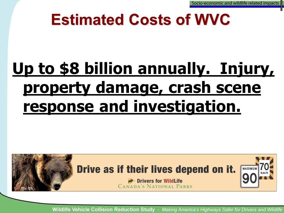Up to $8 billion annually. Injury, property damage, crash scene response and investigation.