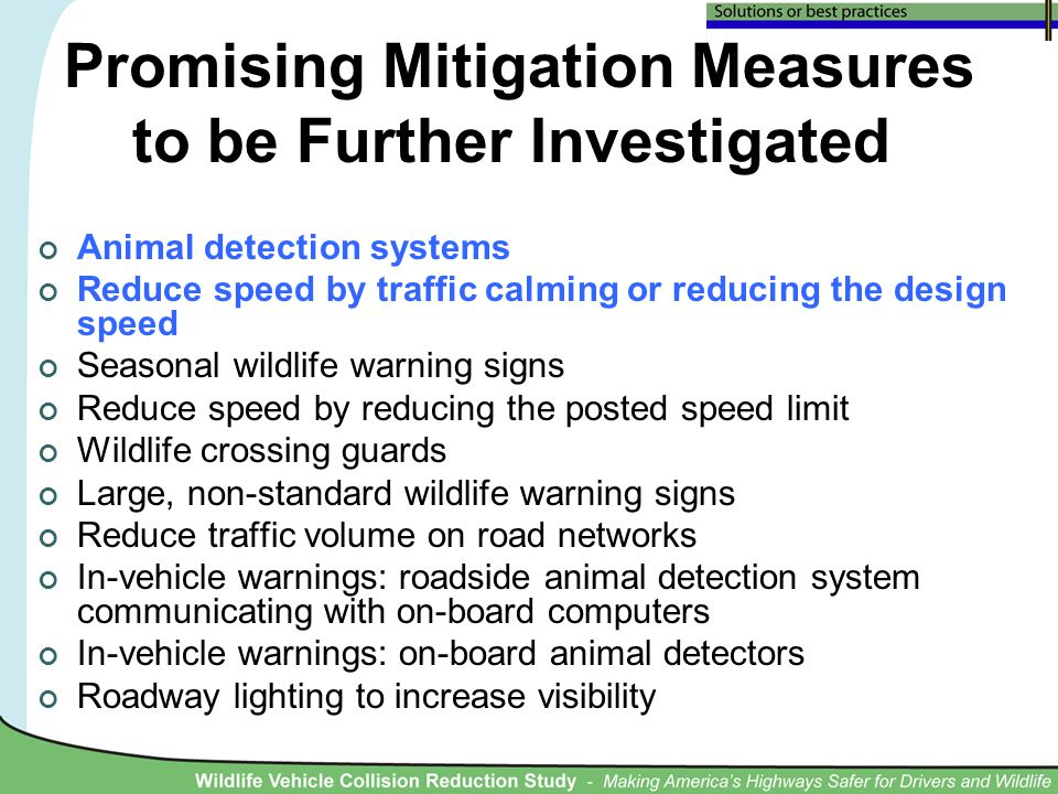 Promising Mitigation Measures to be Further Investigated Animal detection systems Reduce speed by traffic calming or reducing the design speed Seasonal wildlife warning signs Reduce speed by reducing the posted speed limit Wildlife crossing guards Large, non-standard wildlife warning signs Reduce traffic volume on road networks In-vehicle warnings: roadside animal detection system communicating with on-board computers In-vehicle warnings: on-board animal detectors Roadway lighting to increase visibility