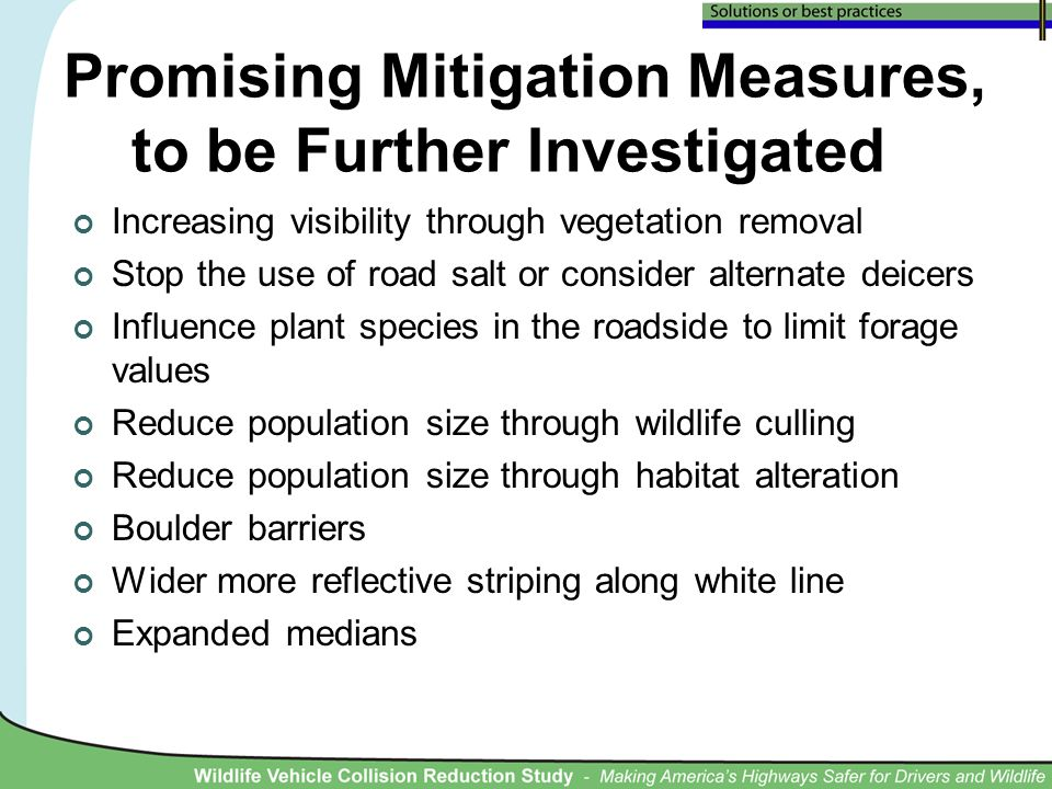 Promising Mitigation Measures, to be Further Investigated Increasing visibility through vegetation removal Stop the use of road salt or consider alternate deicers Influence plant species in the roadside to limit forage values Reduce population size through wildlife culling Reduce population size through habitat alteration Boulder barriers Wider more reflective striping along white line Expanded medians