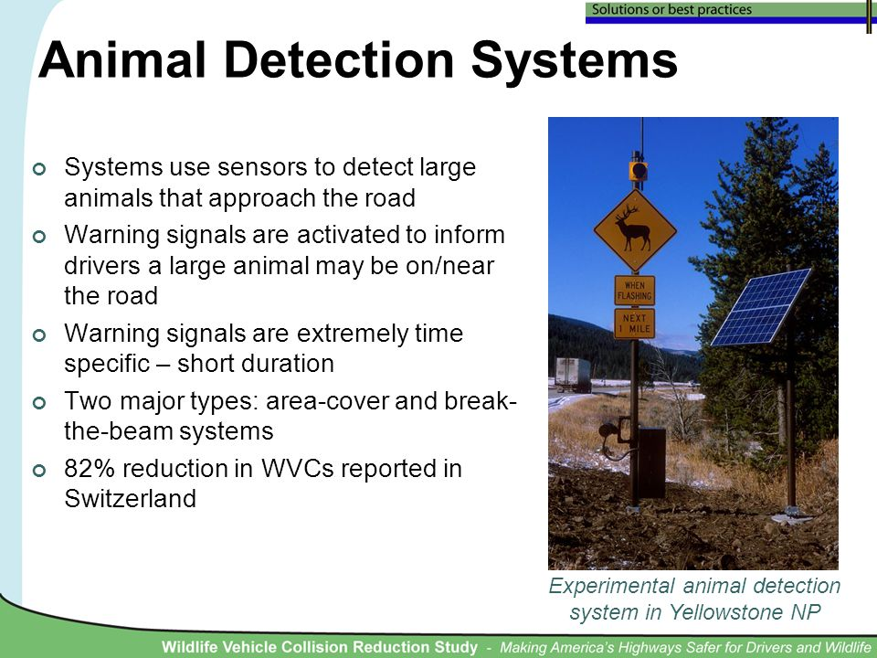 Animal Detection Systems Systems use sensors to detect large animals that approach the road Warning signals are activated to inform drivers a large animal may be on/near the road Warning signals are extremely time specific – short duration Two major types: area-cover and break- the-beam systems 82% reduction in WVCs reported in Switzerland Experimental animal detection system in Yellowstone NP