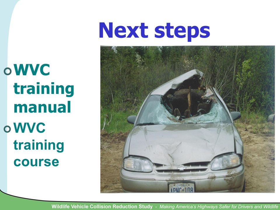 Next steps WVC training manual WVC training course