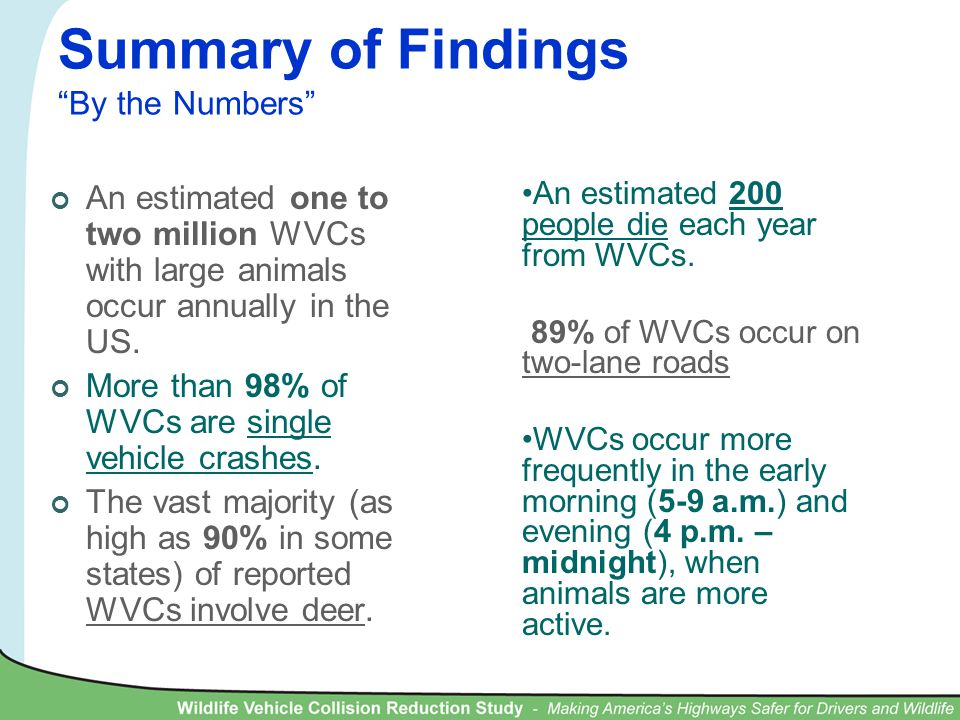 Summary of Findings By the Numbers An estimated one to two million WVCs with large animals occur annually in the US.