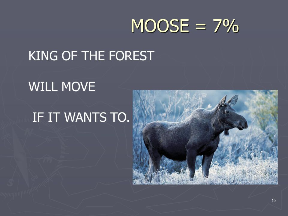 15 MOOSE = 7% MOOSE = 7% KING OF THE FOREST WILL MOVE IF IT WANTS TO.