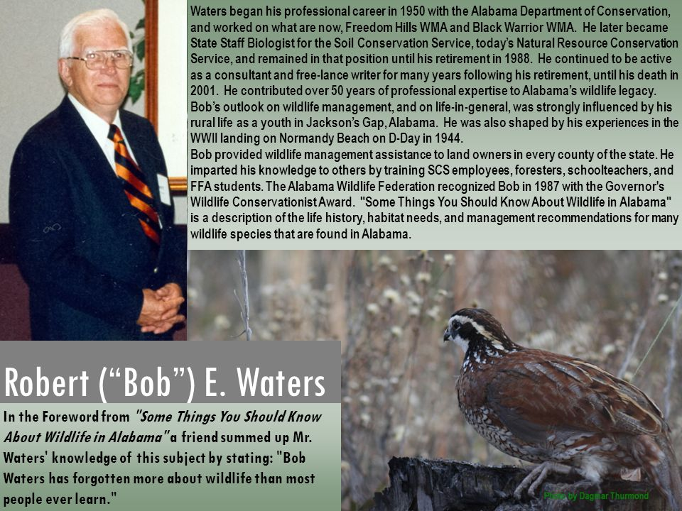 "Robert (""Bob"") E. Waters In the Foreword from"