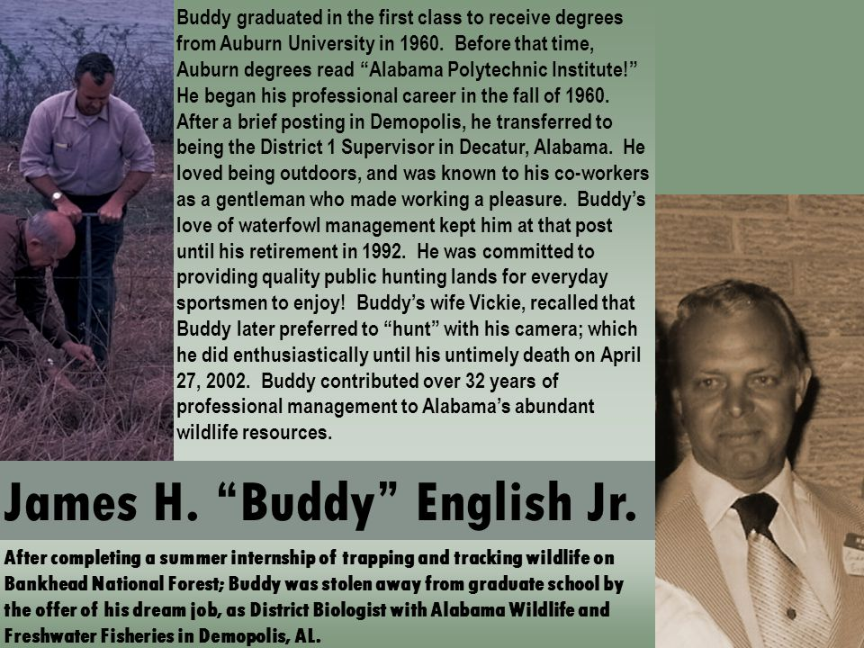 After completing a summer internship of trapping and tracking wildlife on Bankhead National Forest; Buddy was stolen away from graduate school by the offer of his dream job, as District Biologist with Alabama Wildlife and Freshwater Fisheries in Demopolis, AL.