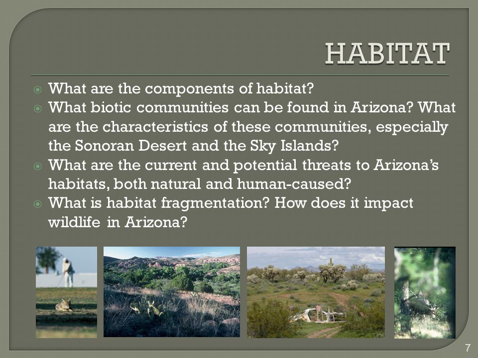  What are the components of habitat.  What biotic communities can be found in Arizona.