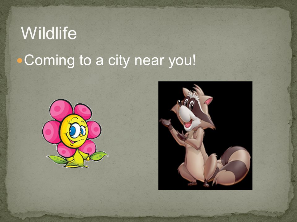 Coming to a city near you! Wildlife