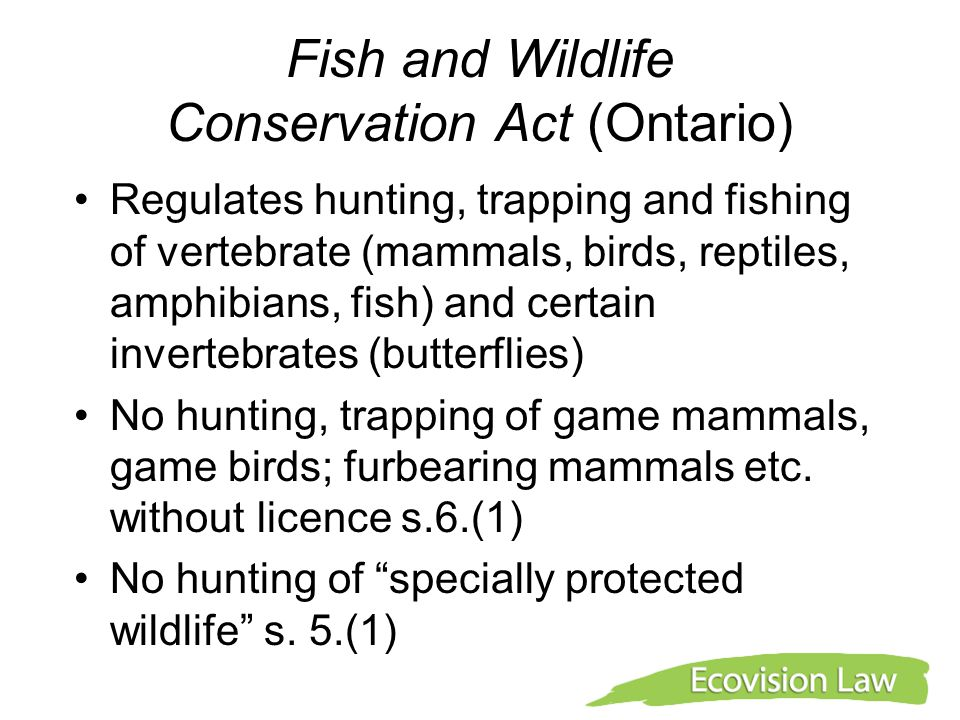 Fish and Wildlife Conservation Act (Ontario) Regulates hunting, trapping and fishing of vertebrate (mammals, birds, reptiles, amphibians, fish) and ce