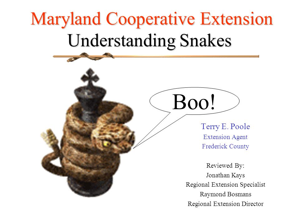 Maryland Cooperative Extension Understanding Snakes Maryland Cooperative Extension Understanding Snakes Terry E.