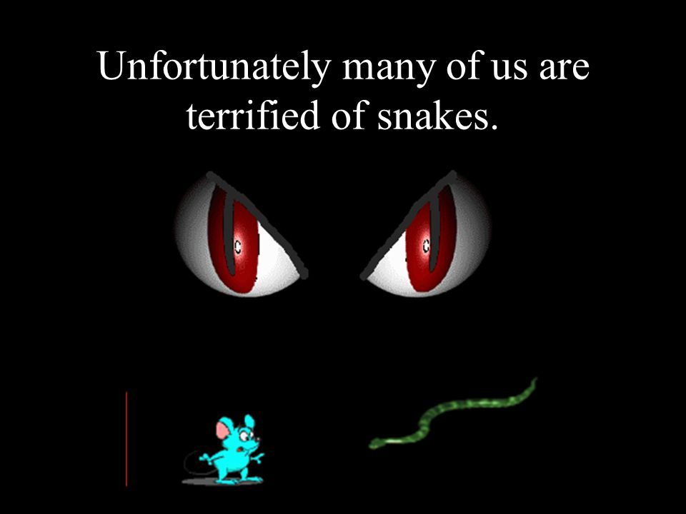 Unfortunately many of us are terrified of snakes.