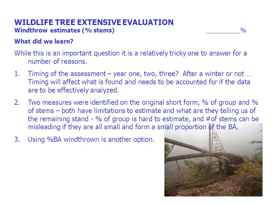WILDLIFE TREE EXTENSIVE EVALUATION % trees removed from WTP __________% Comment What did we learn.