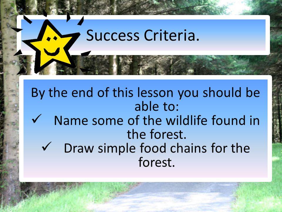 Success Criteria.