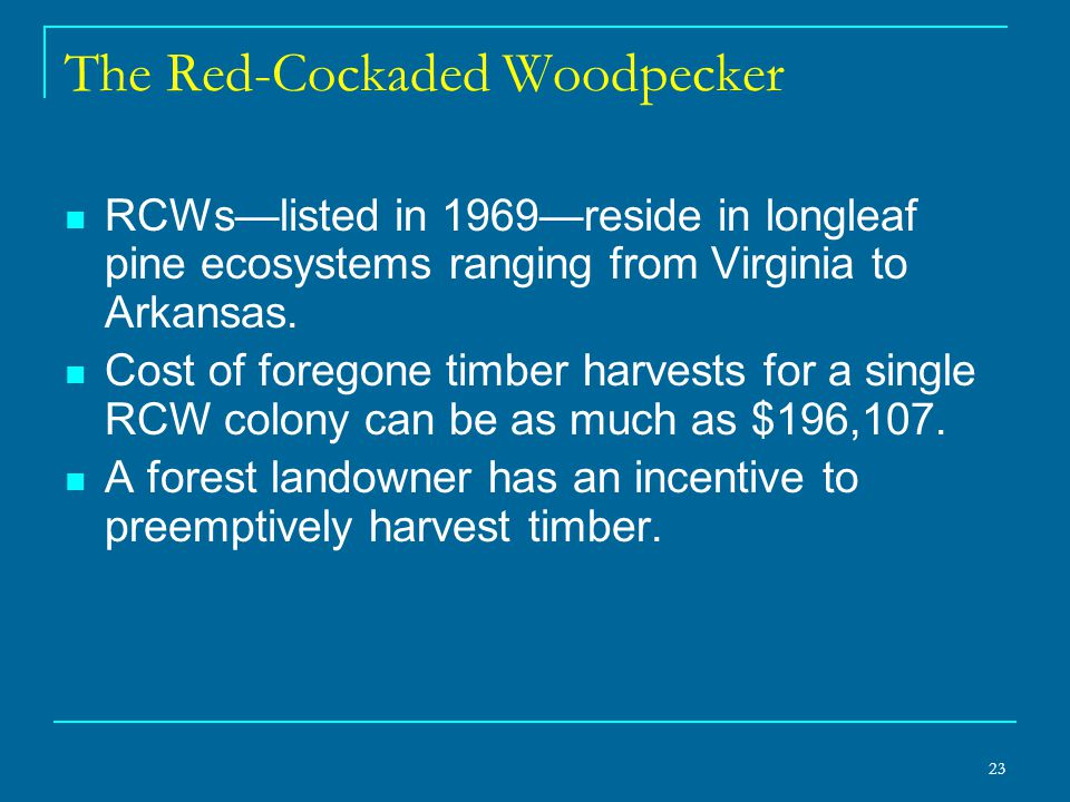 23 The Red-Cockaded Woodpecker RCWs—listed in 1969—reside in longleaf pine ecosystems ranging from Virginia to Arkansas.