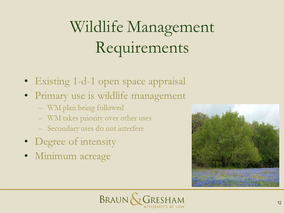 Wildlife Management Requirements Existing 1-d-1 open space appraisal Primary use is wildlife management –WM plan being followed –WM takes priority over other uses –Secondary uses do not interfere Degree of intensity Minimum acreage 12