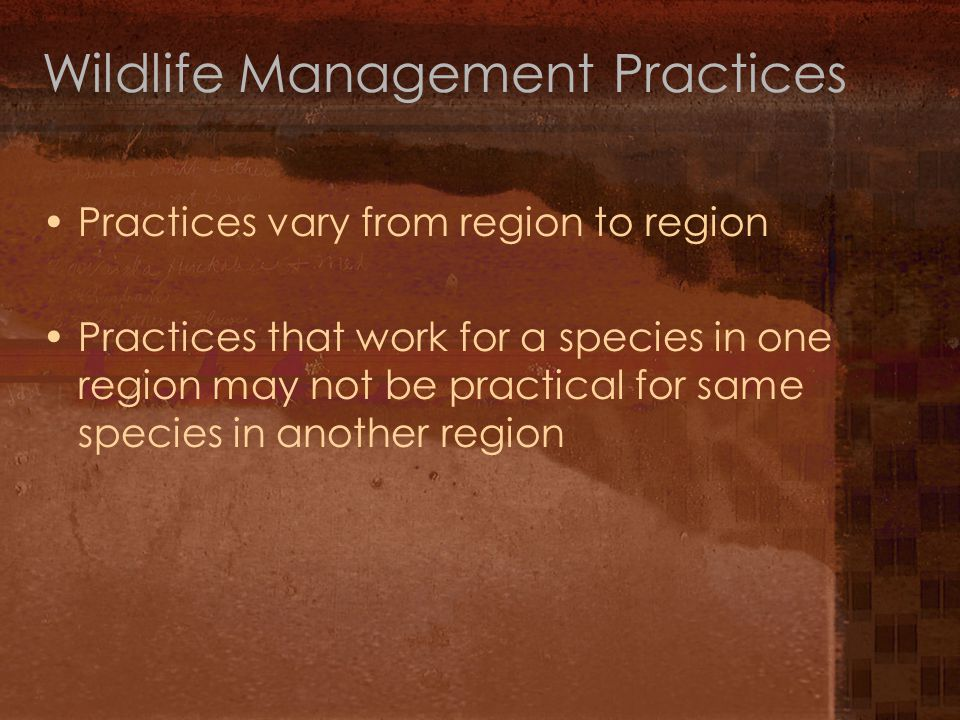 Wildlife Management Practices Practices vary from region to region Practices that work for a species in one region may not be practical for same species in another region