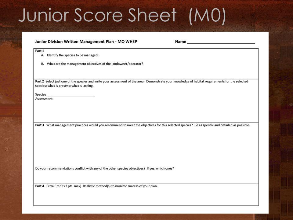 Junior Score Sheet (M0)