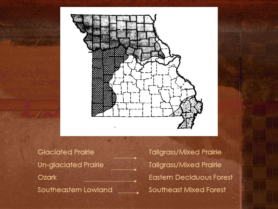 Glaciated PrairieTallgrass/Mixed Prairie Un-glaciated PrairieTallgrass/Mixed Prairie Ozark Eastern Deciduous Forest Southeastern LowlandSoutheast Mixe