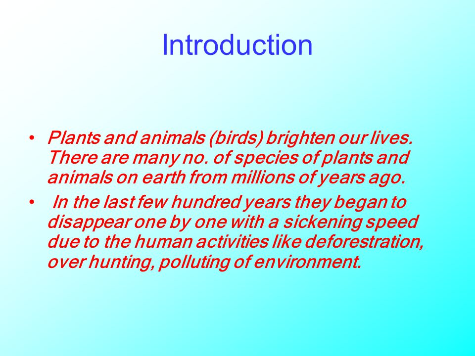 Introduction Plants and animals (birds) brighten our lives.