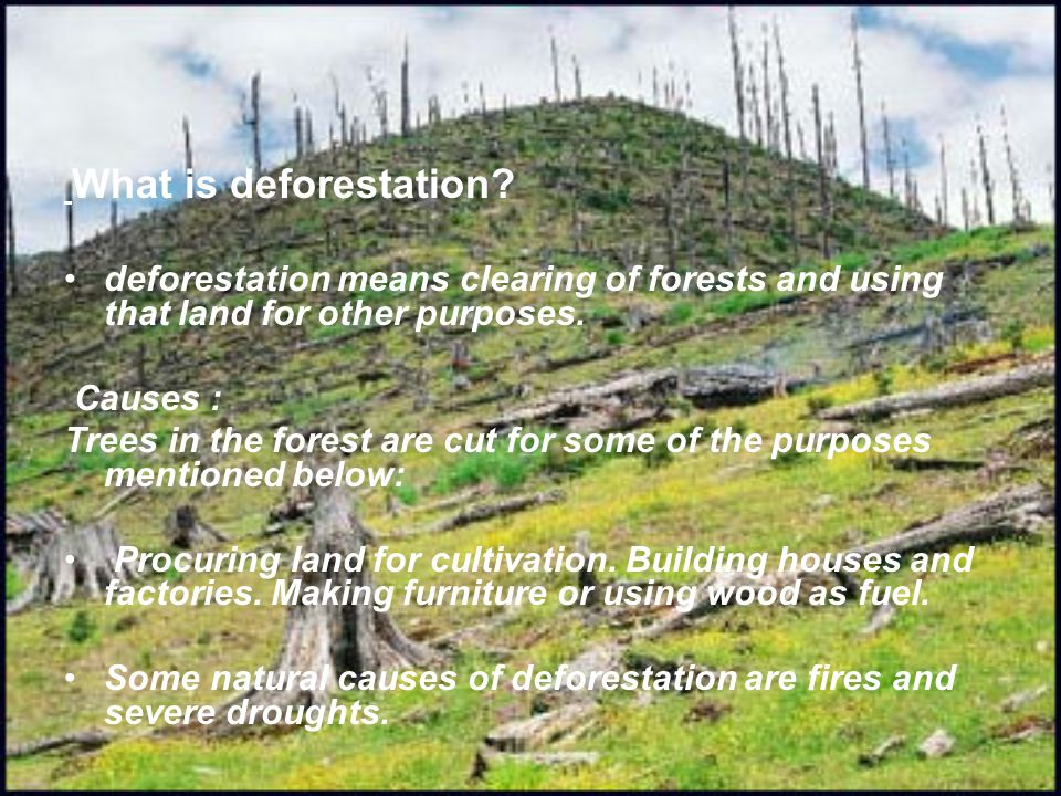 Consequences of deforestration Deforestation increases the temperature and pollution level on the earth.