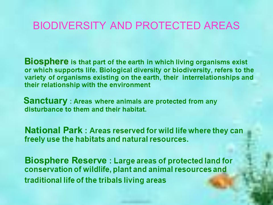 Biosphere is that part of the earth in which living organisms exist or which supports life.