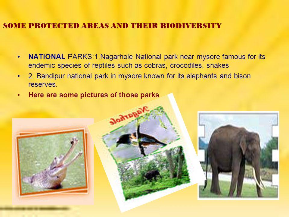 Wild life sanctuary:- Coringa Wildlife Sanctuary is part of the estuary of the River Godavari.
