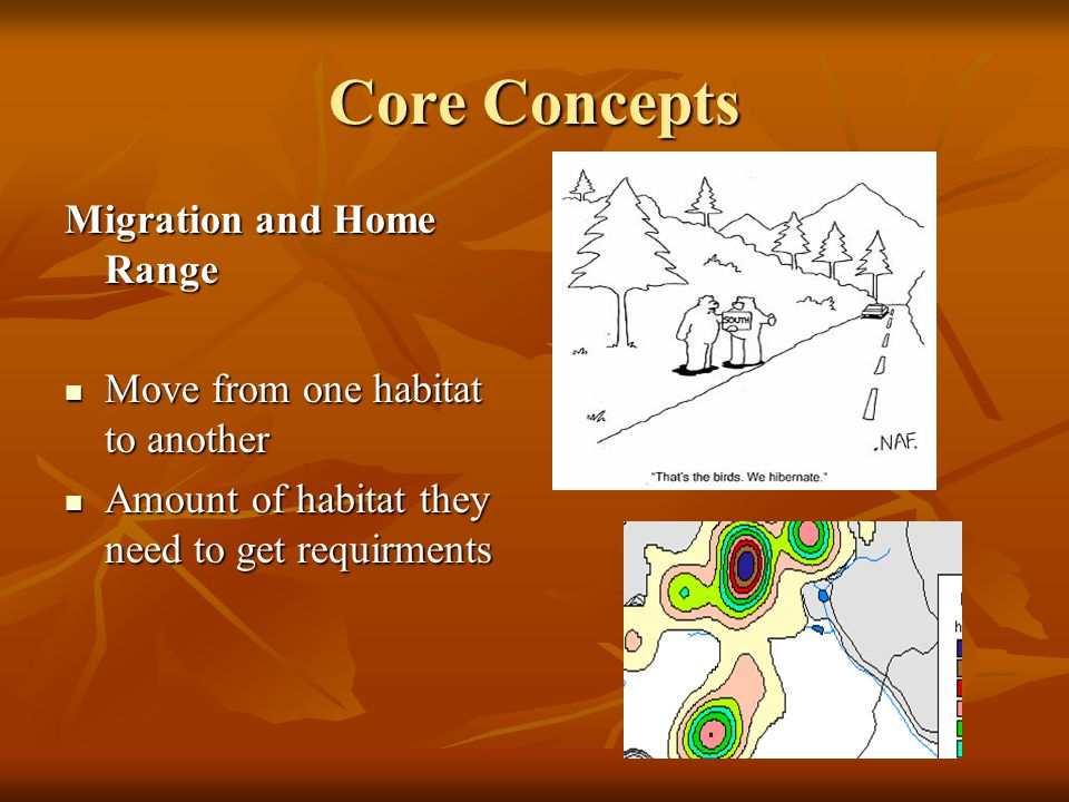 Core Concepts Migration and Home Range Move from one habitat to another Move from one habitat to another Amount of habitat they need to get requirments Amount of habitat they need to get requirments