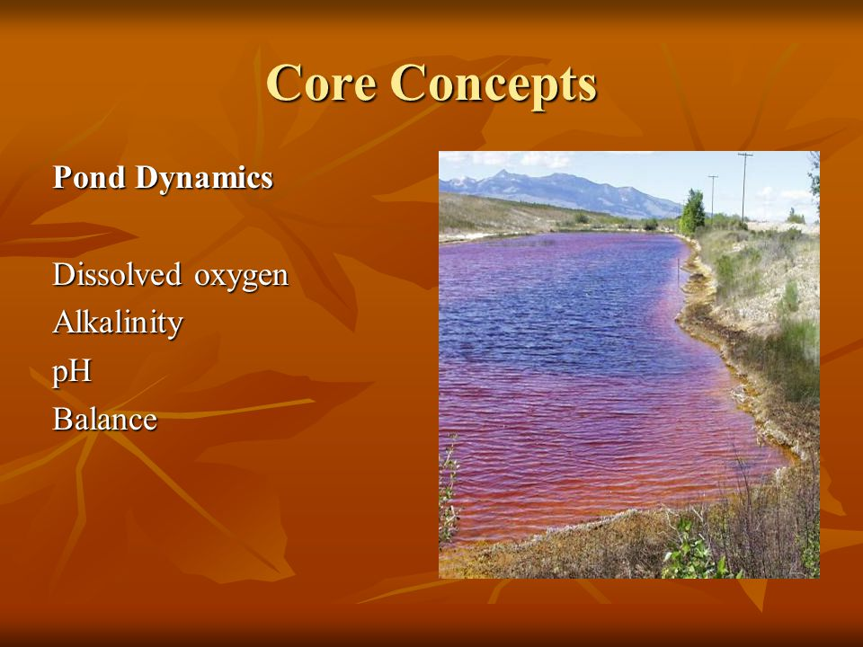 Core Concepts Pond Dynamics Dissolved oxygen AlkalinitypHBalance