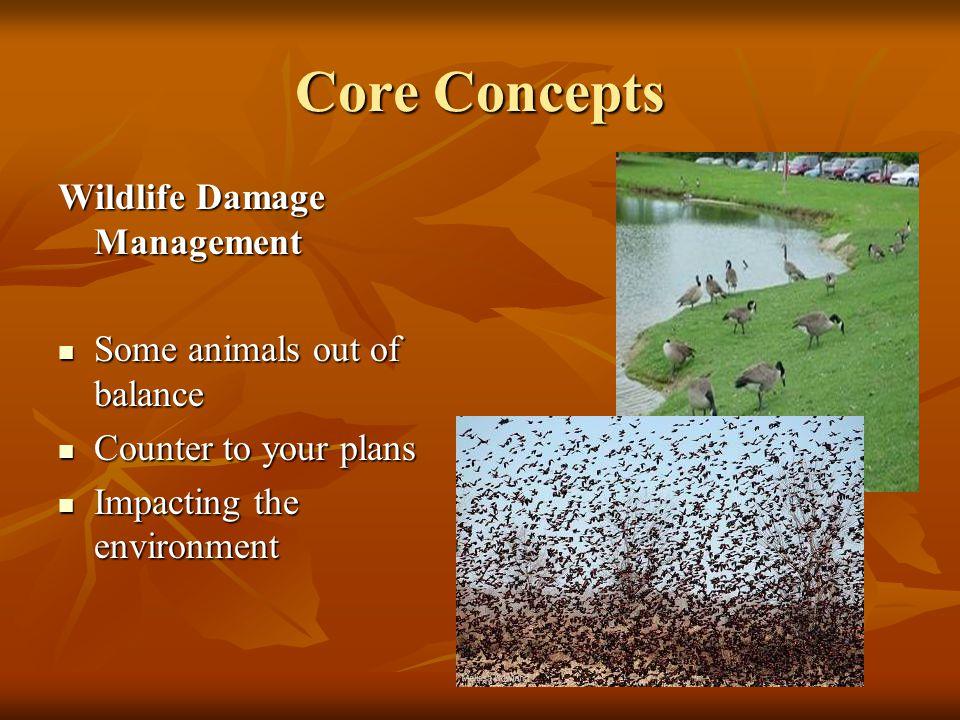 Core Concepts Wildlife Damage Management Some animals out of balance Some animals out of balance Counter to your plans Counter to your plans Impacting the environment Impacting the environment