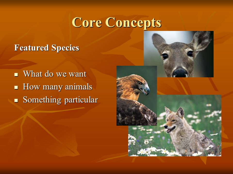 Core Concepts Featured Species What do we want What do we want How many animals How many animals Something particular Something particular