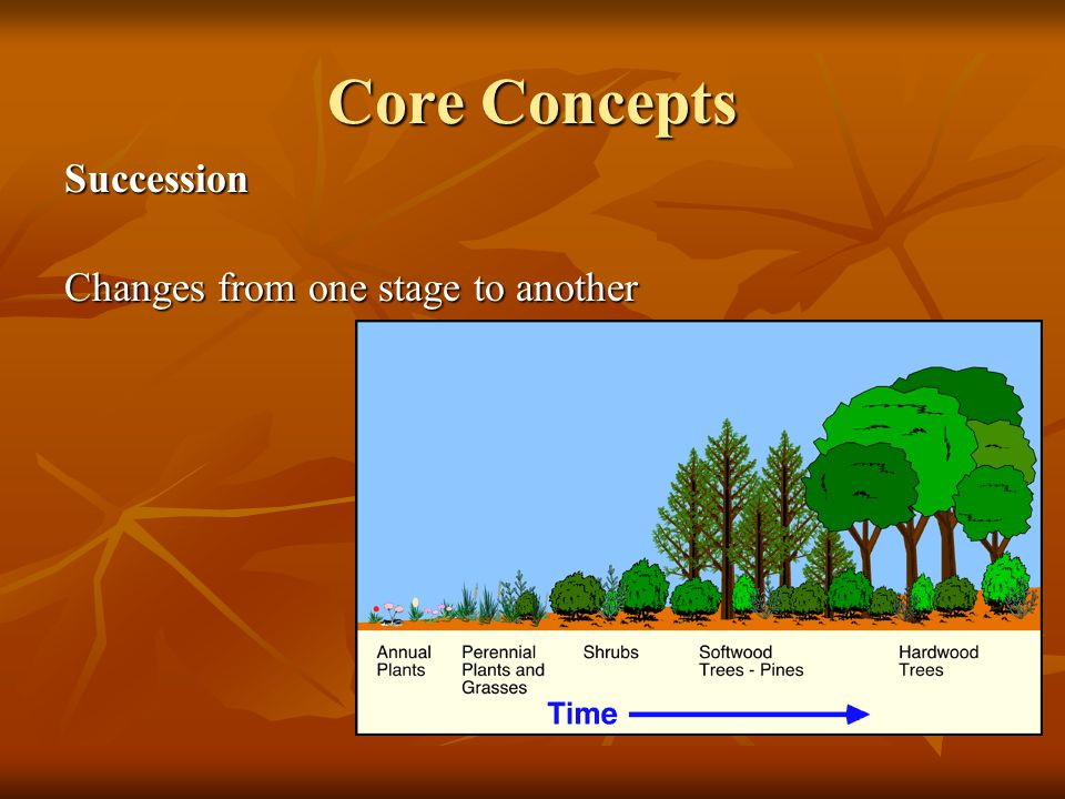 Core Concepts Succession Changes from one stage to another