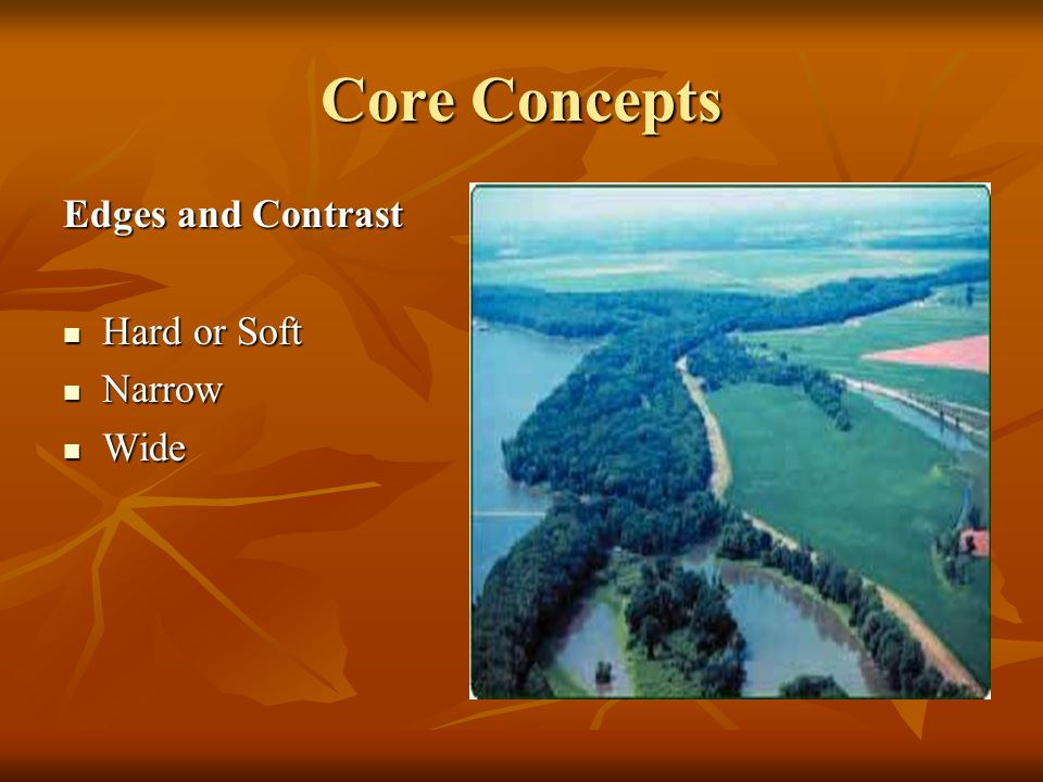 Core Concepts Edges and Contrast Hard or Soft Hard or Soft Narrow Narrow Wide Wide