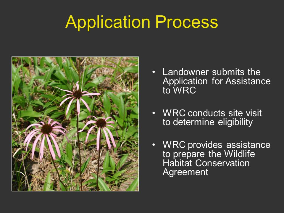 Application Process Landowner submits the Application for Assistance to WRC WRC conducts site visit to determine eligibility WRC provides assistance to prepare the Wildlife Habitat Conservation Agreement