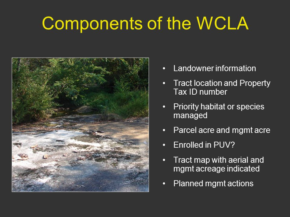 Components of the WCLA Landowner information Tract location and Property Tax ID number Priority habitat or species managed Parcel acre and mgmt acre Enrolled in PUV.