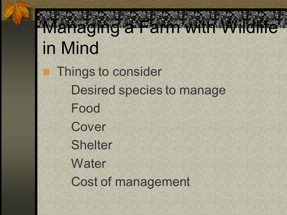 Managing a Farm with Wildlife in Mind Things to consider Desired species to manage Food Cover Shelter Water Cost of management