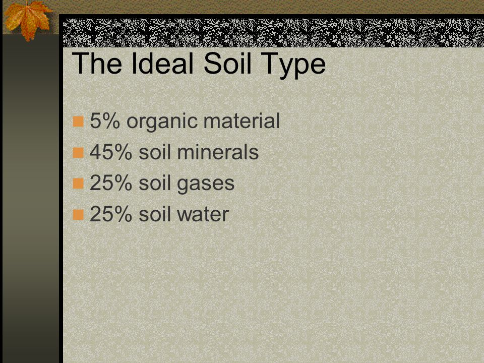 Soil Profiles A soil profile is a vertical view of the soil's layers or horizons.