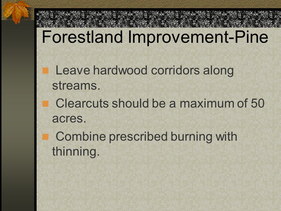 Forestland Improvement-Pine Leave hardwood corridors along streams.