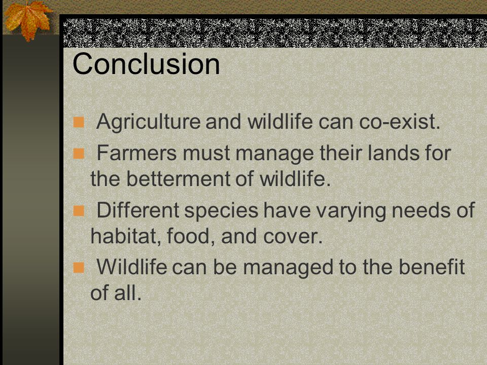 Conclusion Agriculture and wildlife can co-exist.