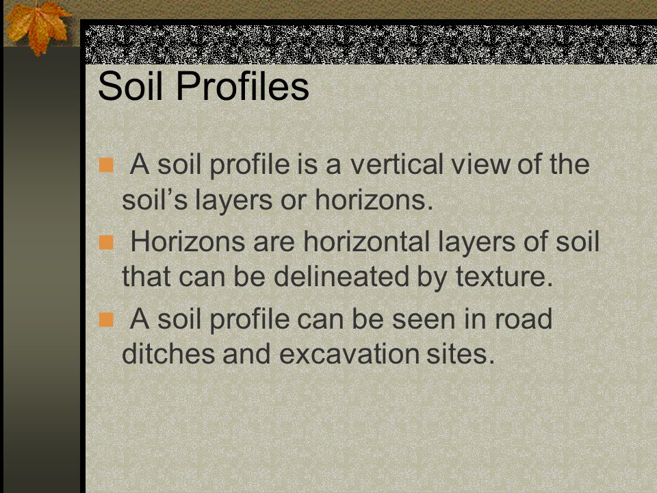 Soil Profile with Horizons