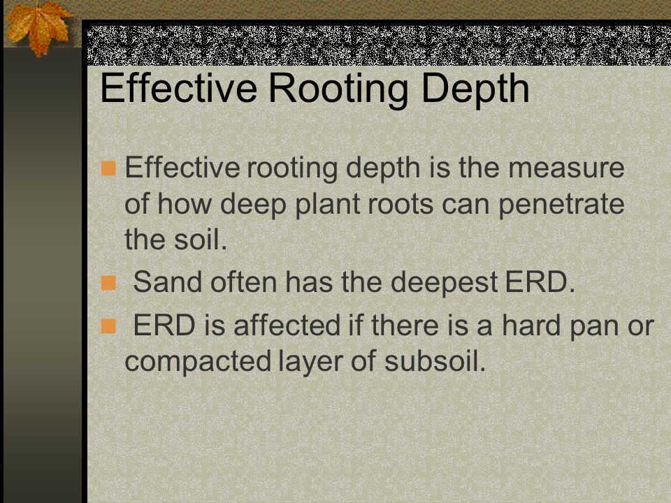 Effective Rooting Depth Effective rooting depth is the measure of how deep plant roots can penetrate the soil.