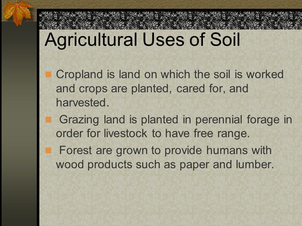 Agricultural Uses of Soil Cropland is land on which the soil is worked and crops are planted, cared for, and harvested.