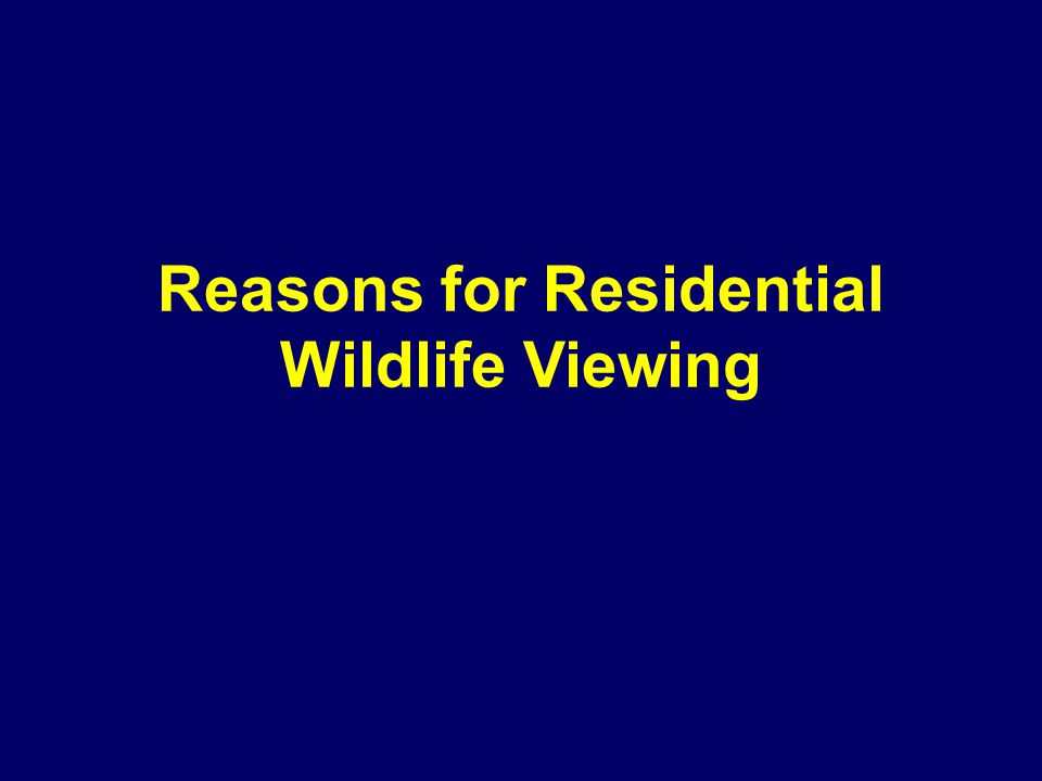 Reasons for Residential Wildlife Viewing