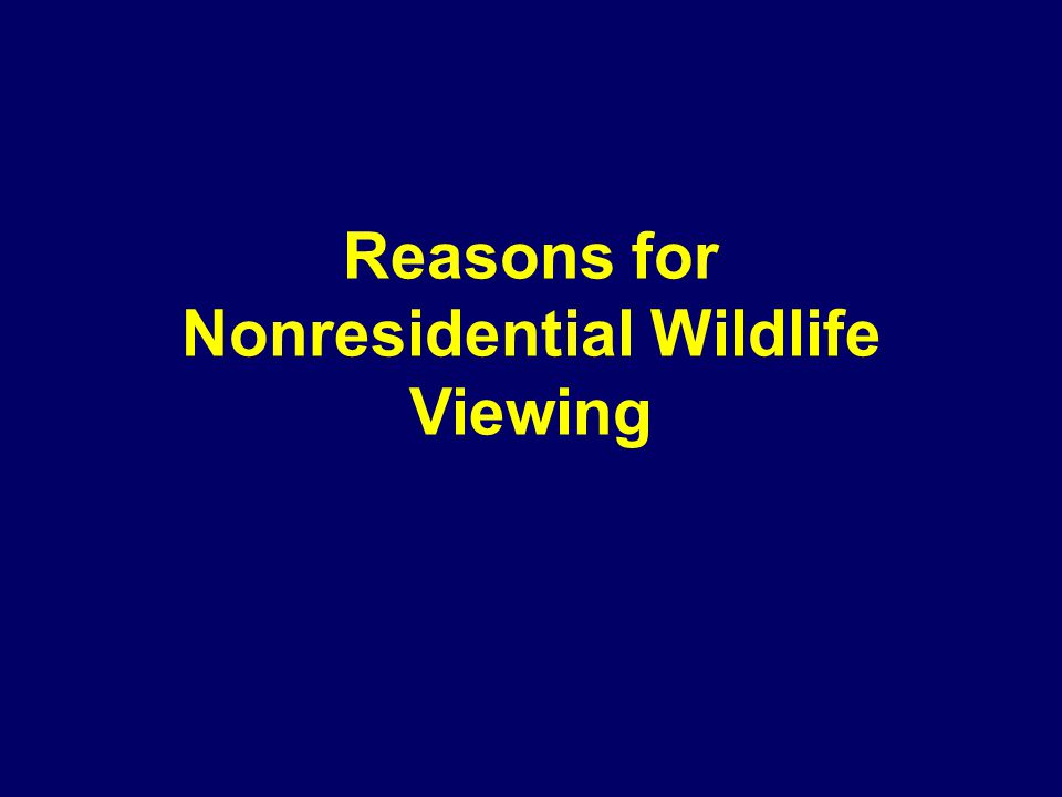 Reasons for Nonresidential Wildlife Viewing