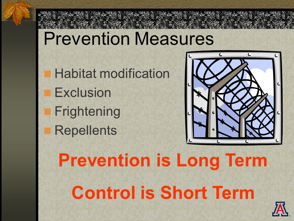 Prevention Measures Habitat modification Exclusion Frightening Repellents Prevention is Long Term Control is Short Term