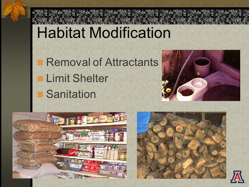 Habitat Modification Removal of Attractants Limit Shelter Sanitation