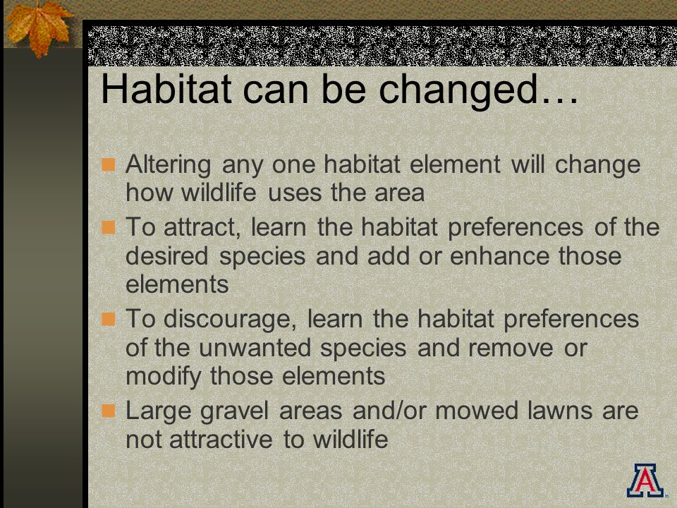 Habitat can be changed… Altering any one habitat element will change how wildlife uses the area To attract, learn the habitat preferences of the desired species and add or enhance those elements To discourage, learn the habitat preferences of the unwanted species and remove or modify those elements Large gravel areas and/or mowed lawns are not attractive to wildlife