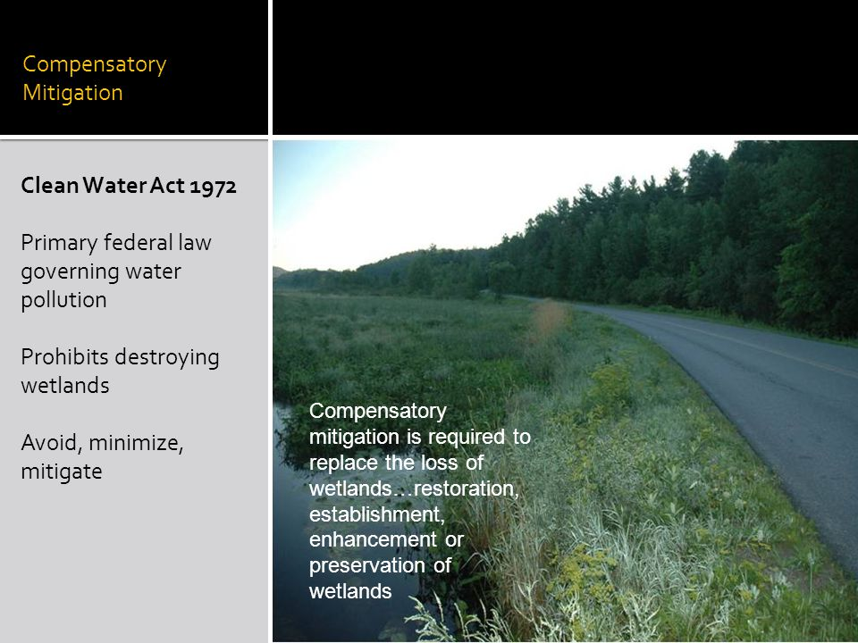 Compensatory Mitigation Clean Water Act 1972 Primary federal law governing water pollution Prohibits destroying wetlands Avoid, minimize, mitigate Compensatory mitigation is required to replace the loss of wetlands…restoration, establishment, enhancement or preservation of wetlands