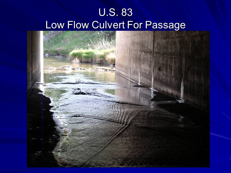 U.S. 83 Low Flow Culvert For Passage