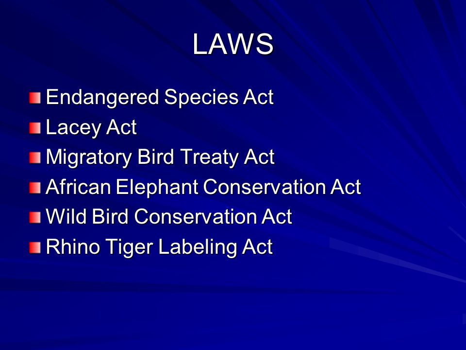 LAWS Endangered Species Act Lacey Act Migratory Bird Treaty Act African Elephant Conservation Act Wild Bird Conservation Act Rhino Tiger Labeling Act