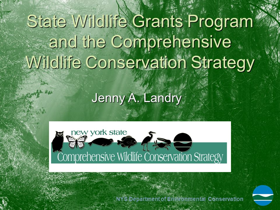 NYS Department of Environmental Conservation State Wildlife Grants Program and the Comprehensive Wildlife Conservation Strategy Jenny A. Landry